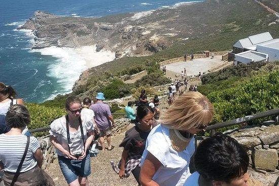 Excursão de dia inteiro a Cape Point e...