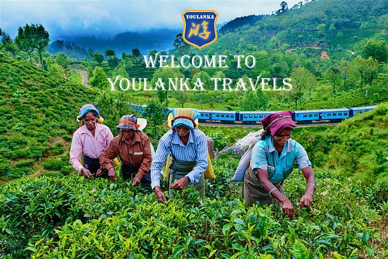 Youlanka Travels