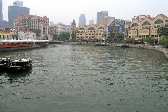 プライベートツアー:シンガポール観光、リバークルーズ付き