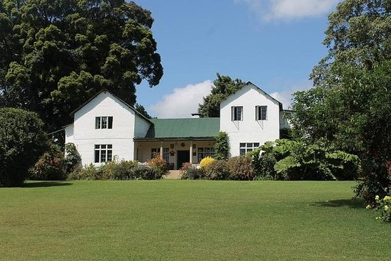 Full-Day Kiambethu Farm Tea Plantation...