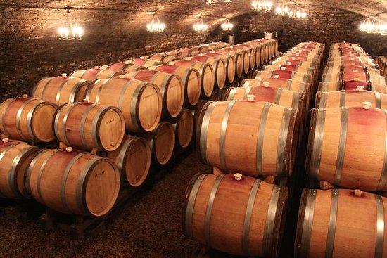 Degustação de Vinhos Divina em um...
