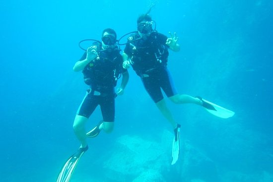 Never dived before - try diving with...