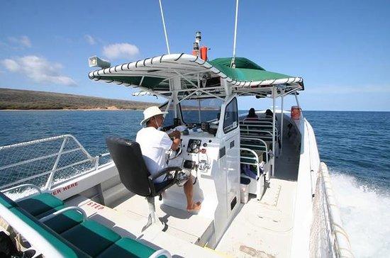 Sanity Snorkel Vessel Charte privée