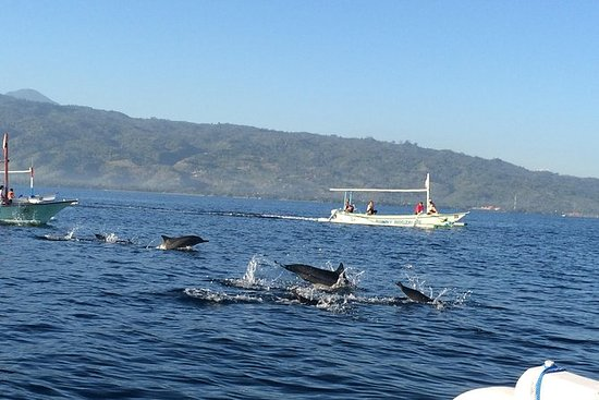 Lovina Dolphin Watching y Temple...