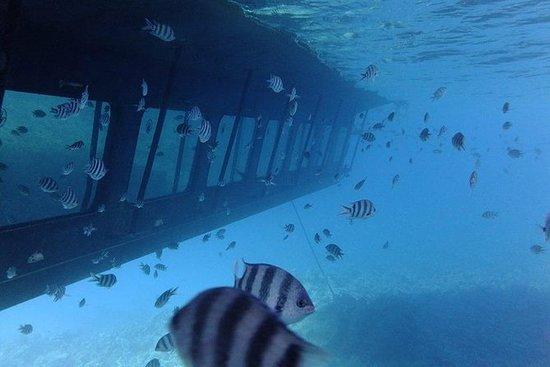 Depuis Hurghada, voyage célèbre en...