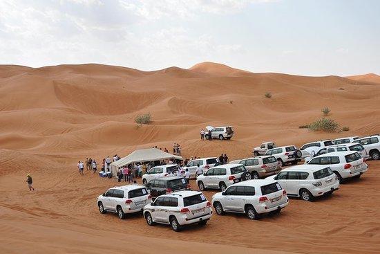 Halbtägige Wüstensafari (Dubai Fossil...