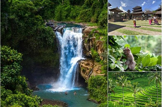 Private Full-Day Experience Bali Top...