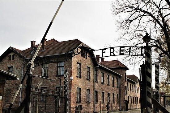 Tour guiado por Auschwitz-Birkenau em...
