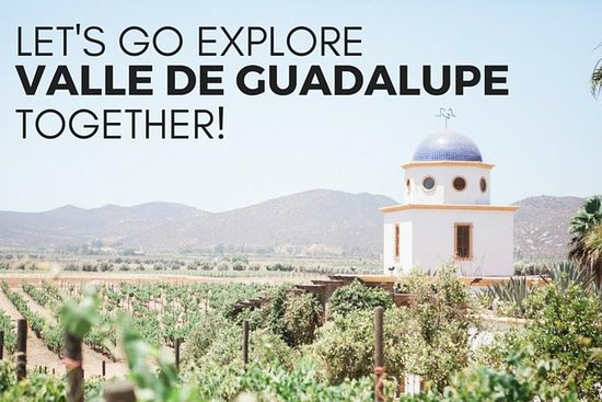 Familienfreundliches Baja Wein und...
