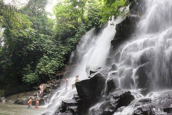 Melhor Tour com Cachoeira Kanto Lampo...