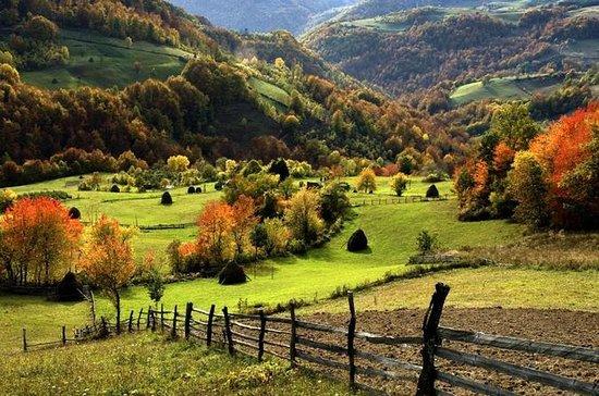 WESTERN SERBIA: ZLATIBOR & TARA...