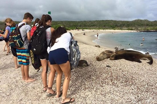 Ecuador & Galapagos Fellesskap 25...