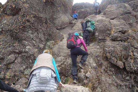 7days Mt. Kilimanjaro por la ruta de...