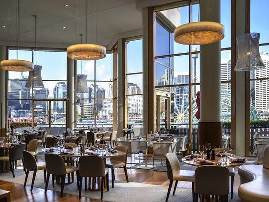 Novotel Sydney on Darling Harbour : Restaurant