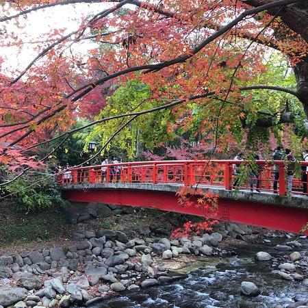Imagen de Katsura Bridge