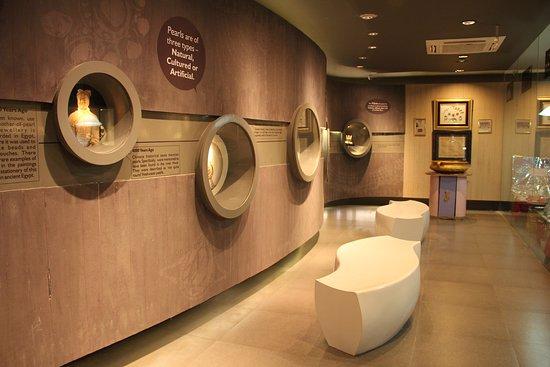 Secunderabad, Ấn Độ: Pearl Museum