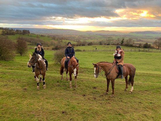 Stanton, UK: We had an amazing time at Cotswolds Riding! Rory and the other staff were great. Such beautiful property.