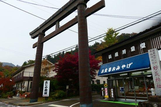 道路に面して大鳥居がありました。この鳥居の中をくぐり少し坂を上がった所に100円の駐車場があります。でもこの先の道の駅の駐車場の方をお勧めします。