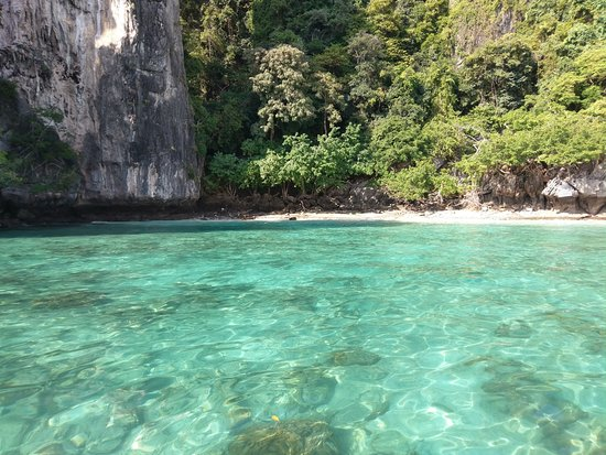 Jungle Trip to Khao Sok National Park: Phang Nga Bay