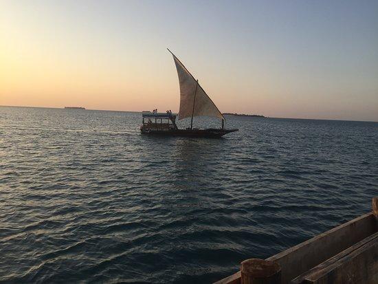 Rafiki Tours and Travel: Dhow Sunset Cruise