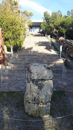Sigri, Greece: Προσοψη/ εισοδος μουσειου