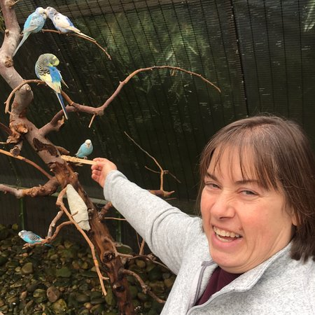 Allenwood Photo