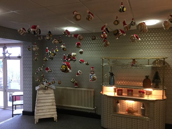 Blagdon, UK: Its BEEginning to look a lot like Christmas up at Yeo Valley HQ Canteen.