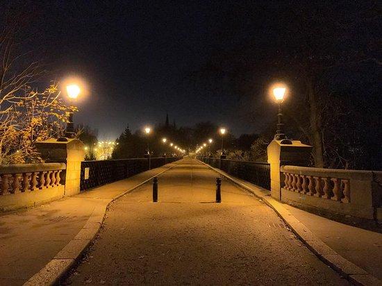 A bridge that crosses Jesmond Dene