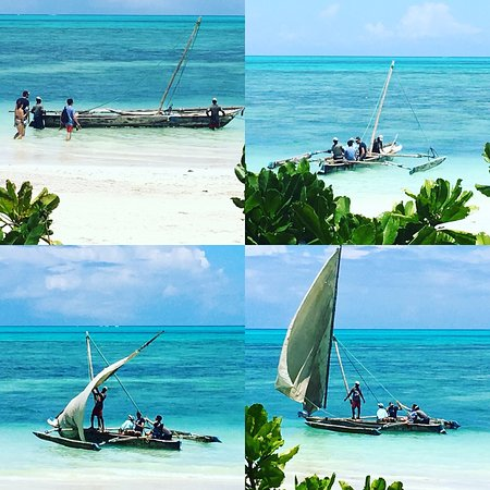 Driftwood Beach Lodge: Snorkelling trips on the dhows are one of the favourites as Captain Abdullah collects you from right outside the lodge.