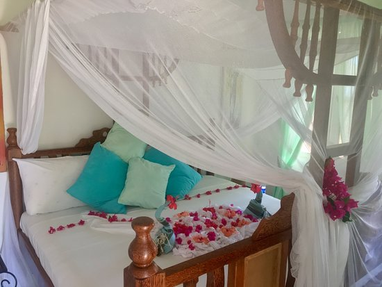 Driftwood Beach Lodge: Relax in our comfortable rooms, with little touches to make you feel welcome.