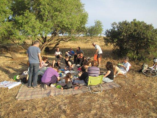 Tsafririm, Izrael: picnic
