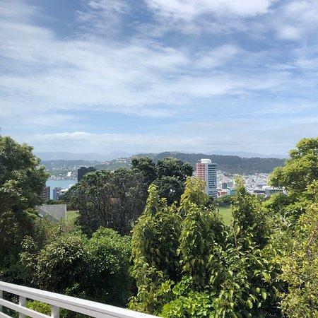 Foto de Wellington