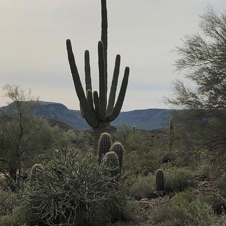 Bilde fra Black Canyon City