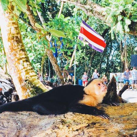 Must visit in Costa Rica!