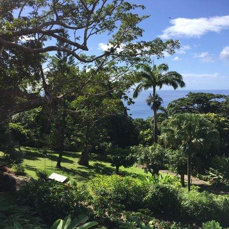 Restaurant Panoramique Du Jardin Botanique Guadeloupe Avis Sur Le