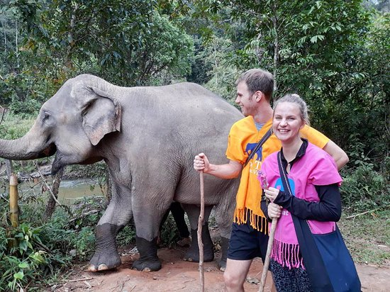 Elephant jungle walk at Blue Tao.