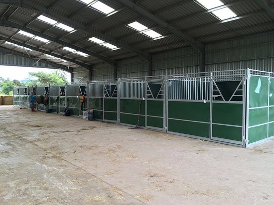 18 solid and safe 3m x 3m stables to hire