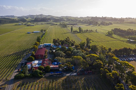 Te Awanga, Nueva Zelanda: Clearview Estate Winery, Cellar Door & Red Shed Restaurant.  Surrounded by the long established vineyards of coastal Hawke's Bay, a Mediterranean inspired haven of hospitality and cuisine.