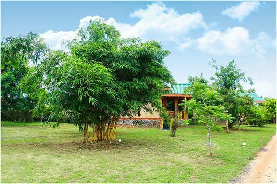 View from Restaurant  - Picture of Yala Peace Cottages, Tissamaharama