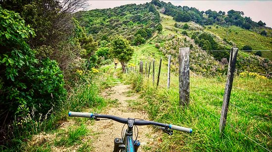 Whangarei, New Zealand: outdoor adventures