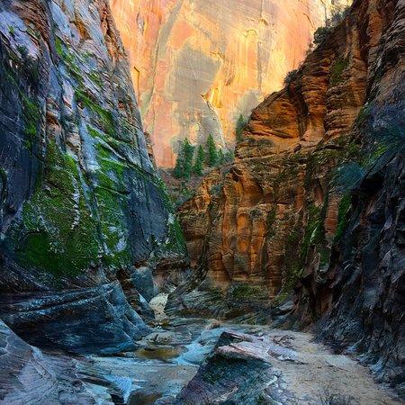 Zion National Park 사진