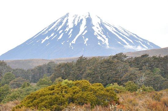 Tongariro National Park, New Zealand: Tongariro Park