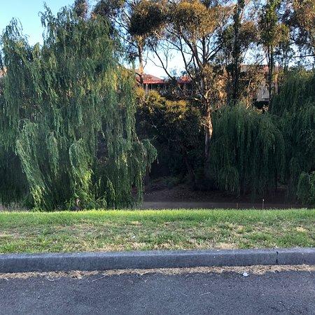 Hobart Rivulet Park