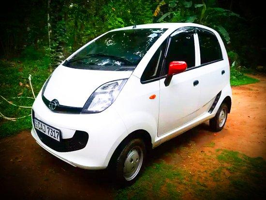 Tuk Tuk & Taxi Tours Udawalawa
