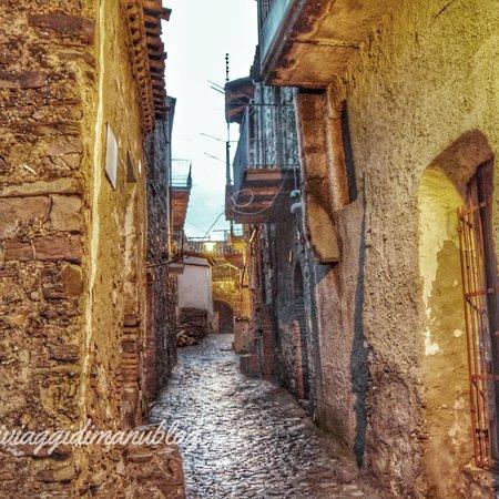 Tursi Photo