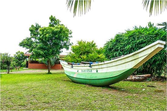 Tissamaharama, Sri Lanka: Hotel Garden
