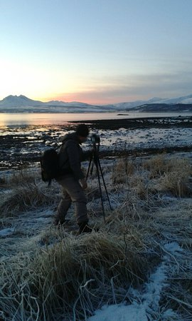 Fjord/ phototour in Tromsø with karl-ivar's guided tours