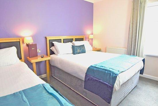 Room 116 - Standard Twin Room
