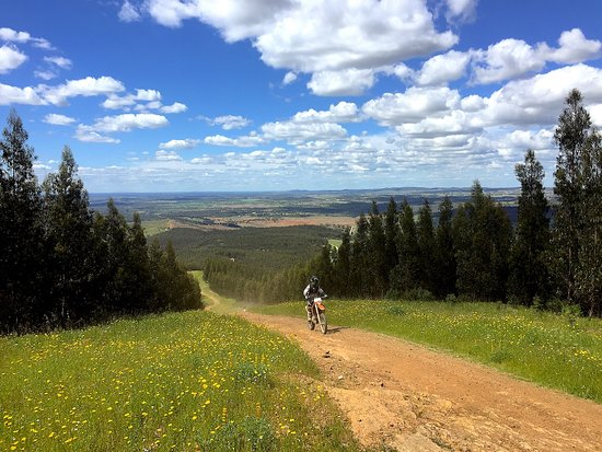 Bellerive-sur-Allier, França: Lisboa Tour. 7 days off-road motorcycle tour in Portugal.