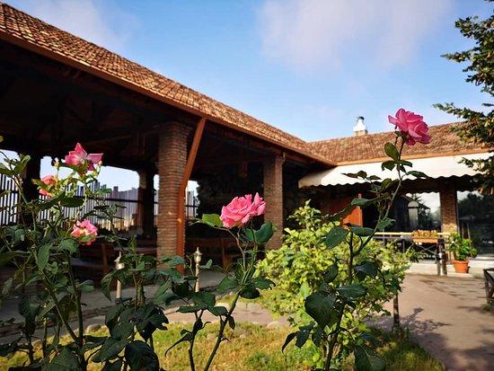 Mtskheta-Mtianeti Region, Georgia: Место, куда хочется вернуться. Прекрасная атмосфера, вкусная еда и отличный сервис